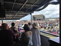 Concerts & Food Festivals